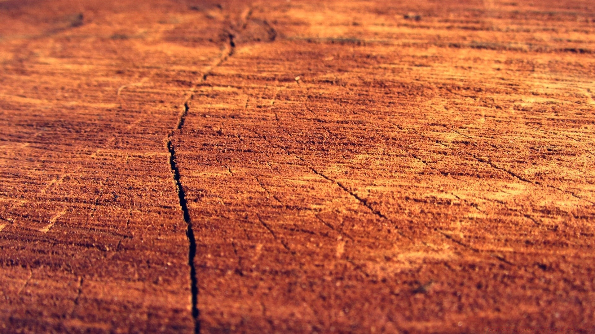 текстура дерево макро на телефон