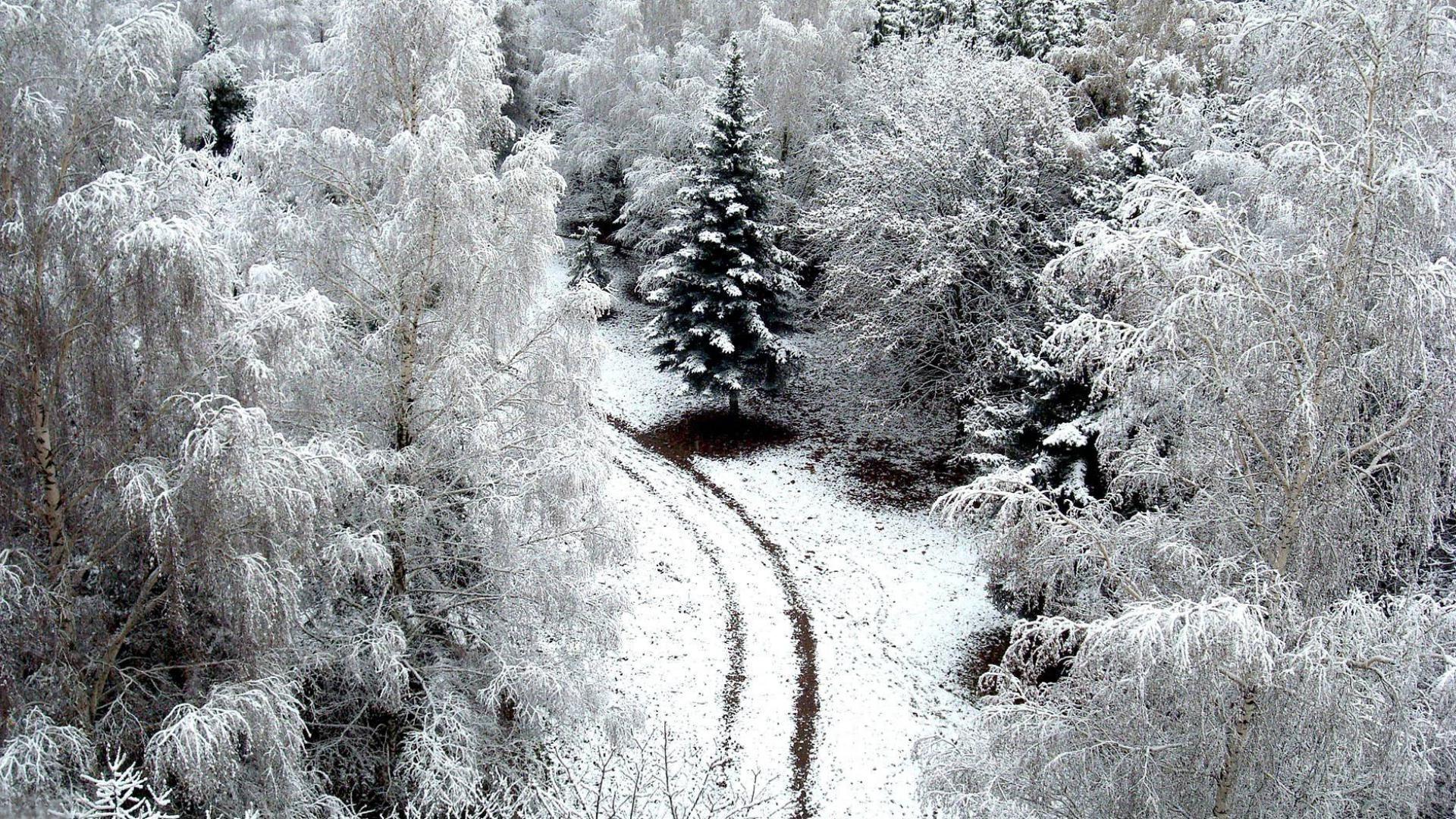 картинки для рабочего стола вот и зима информацию нем