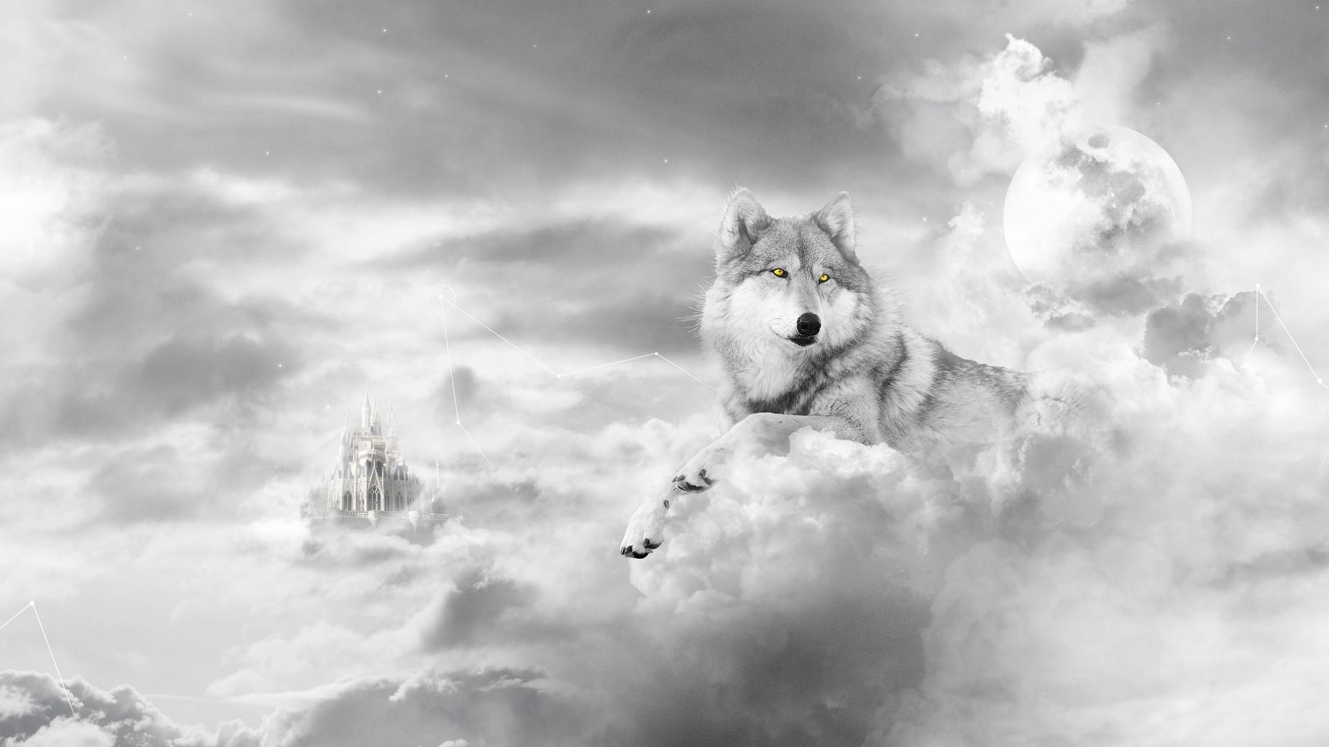 картинки на рабочий стол работа не волк