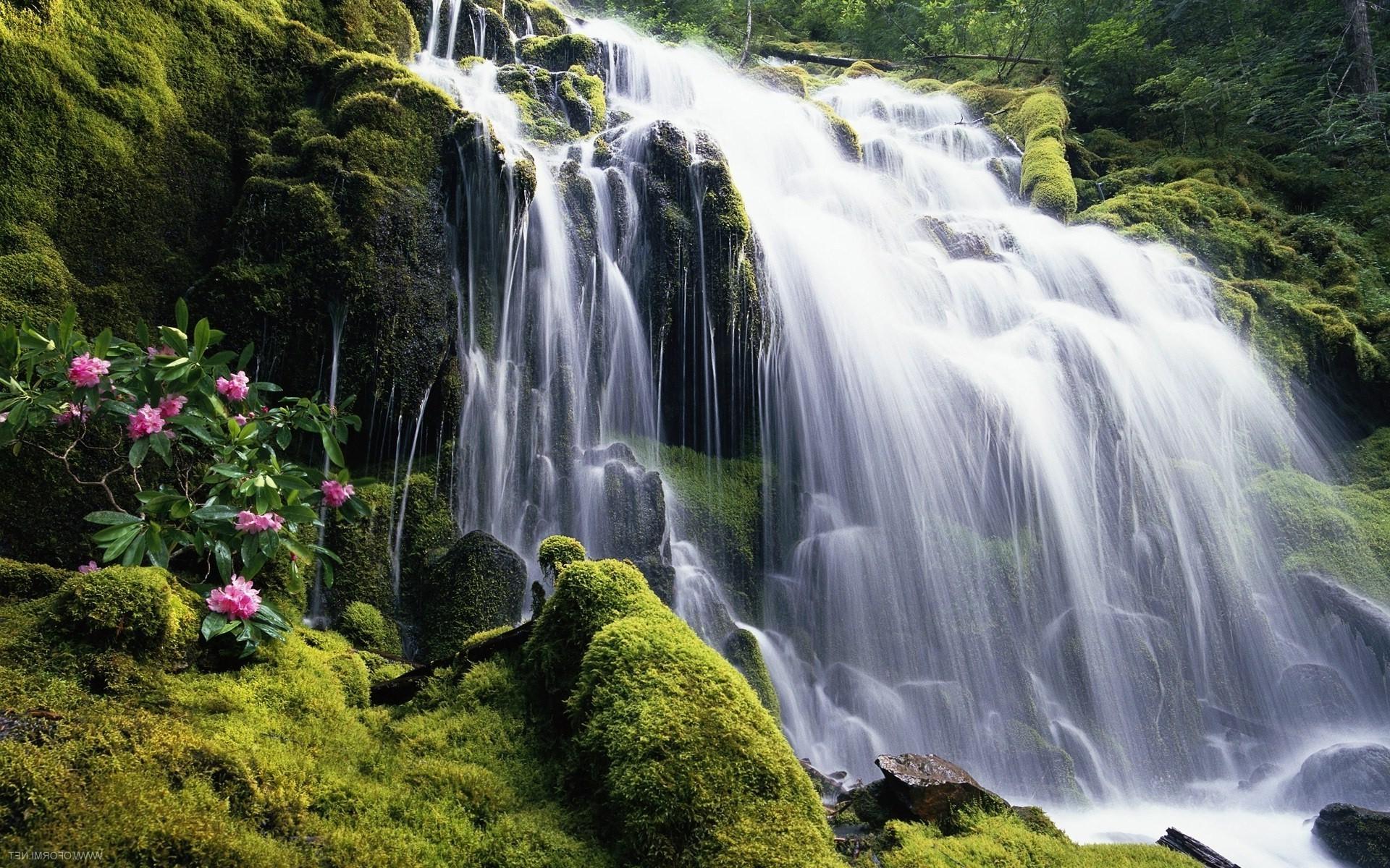 Водопад из картины без смс