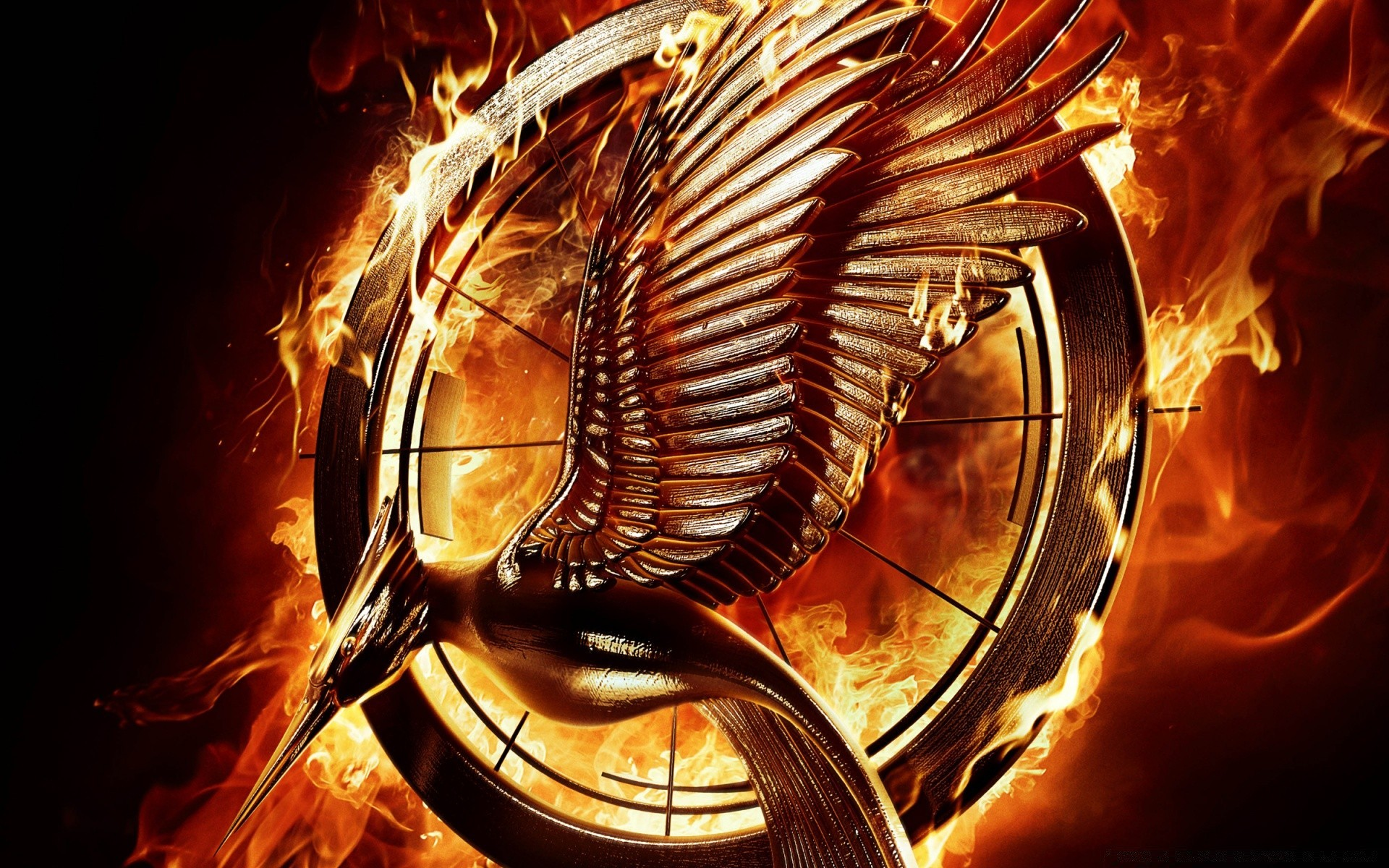 catching fire tributes - HD 1920×1080