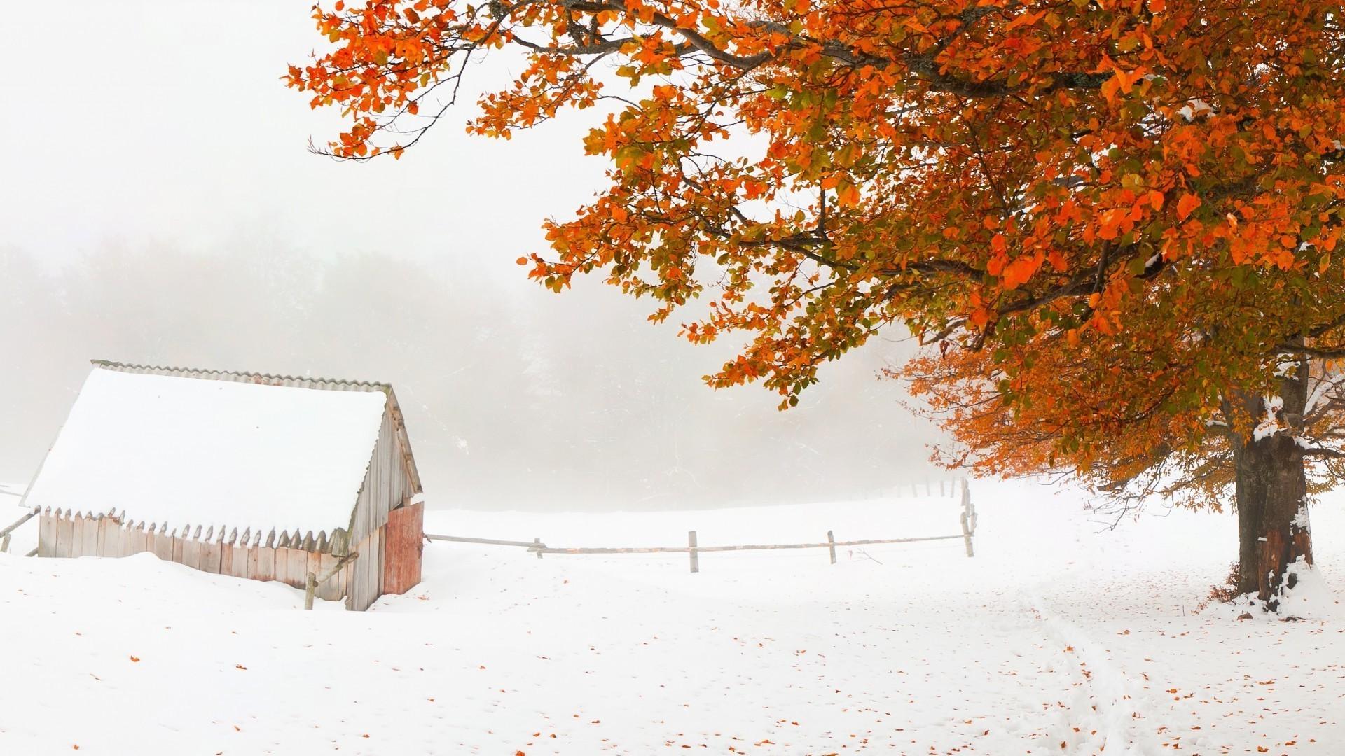 осень первый снег обои рабочего стола № 637011  скачать