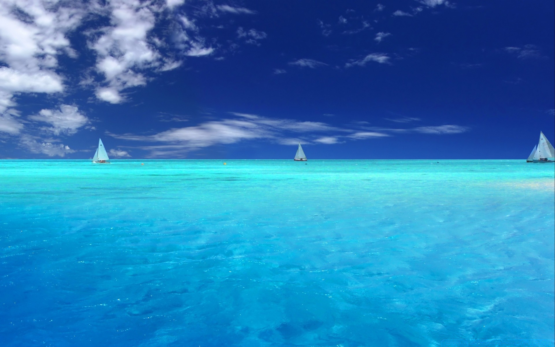 новое яркие фотообои на рабочий стол океан будем баловать