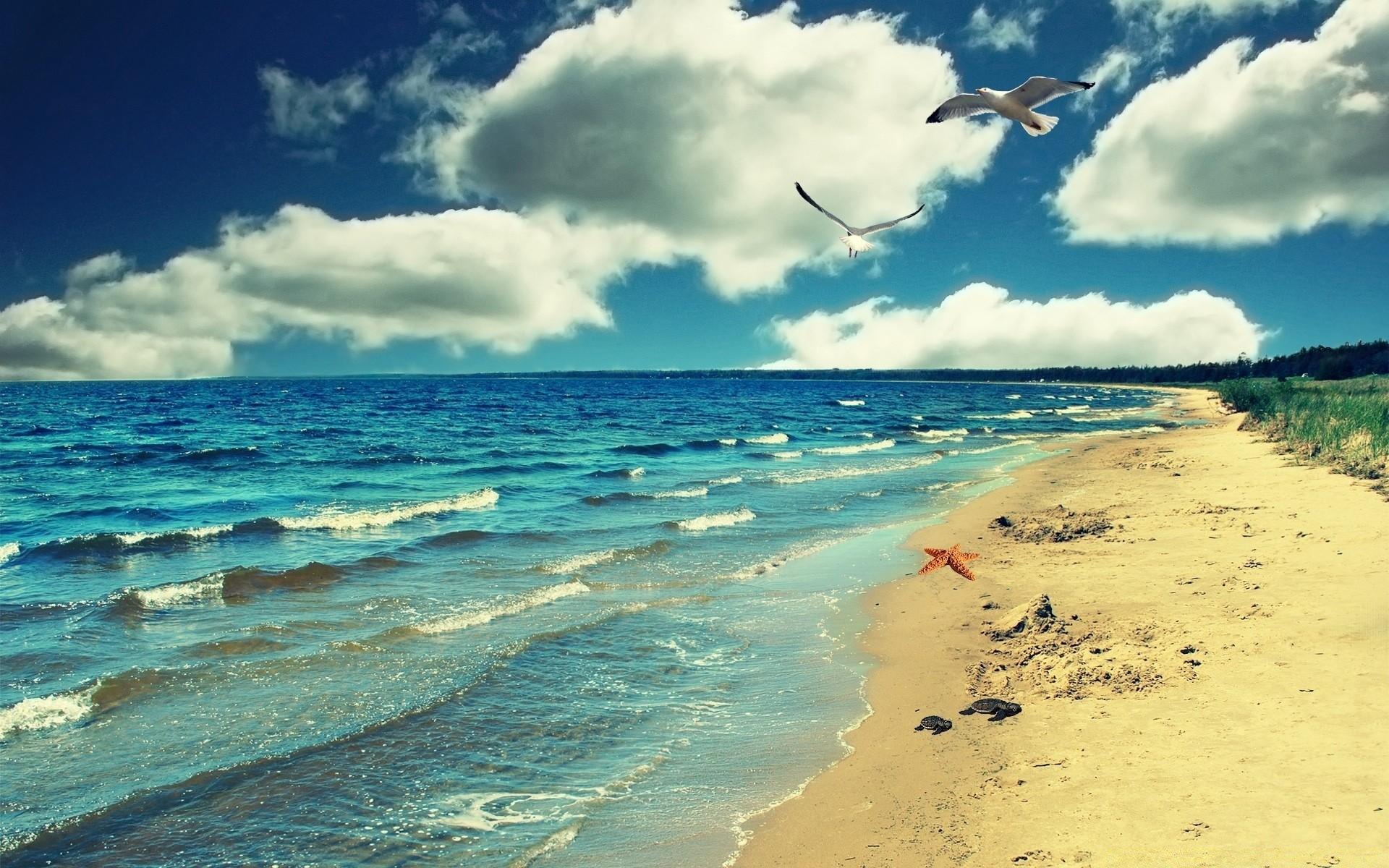 Днем рождения, картинки лето море солнце пляж крым