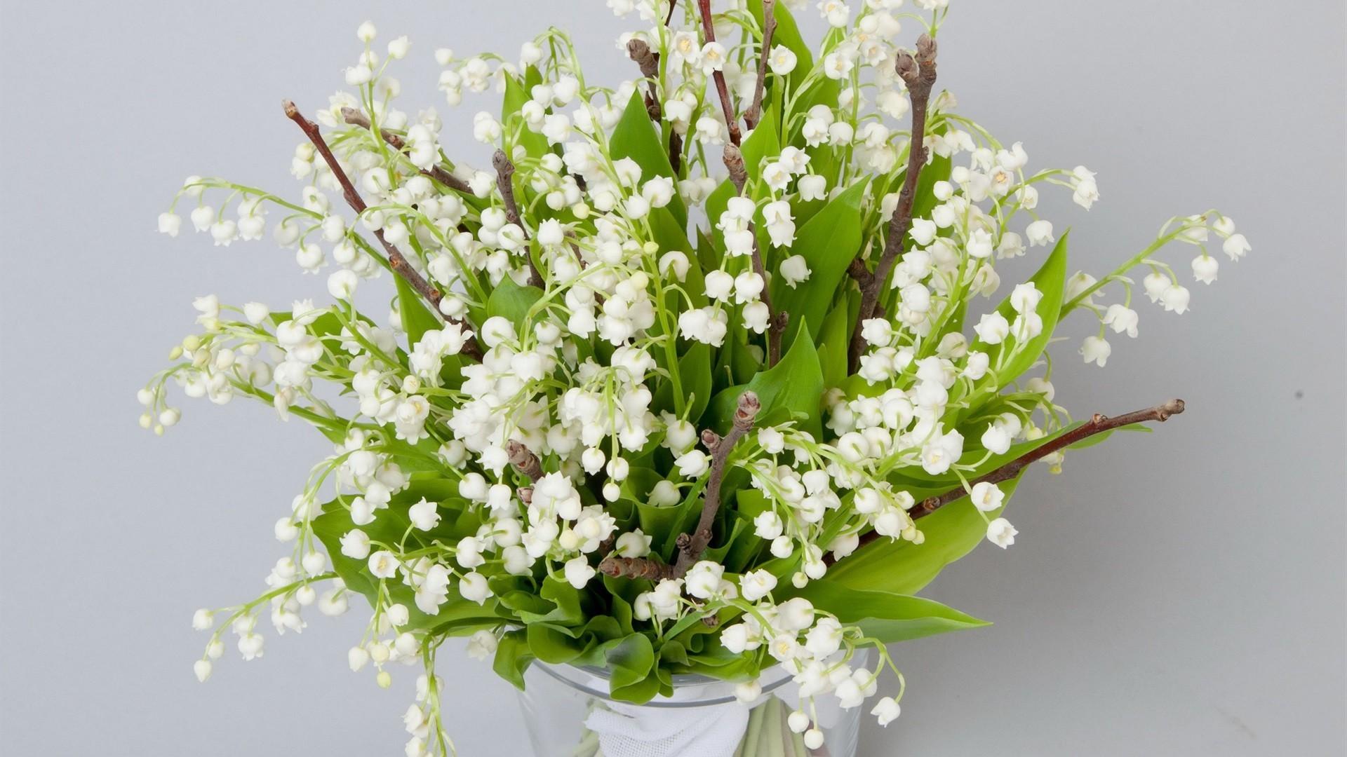 Цветы белые ландыши  № 1608723  скачать