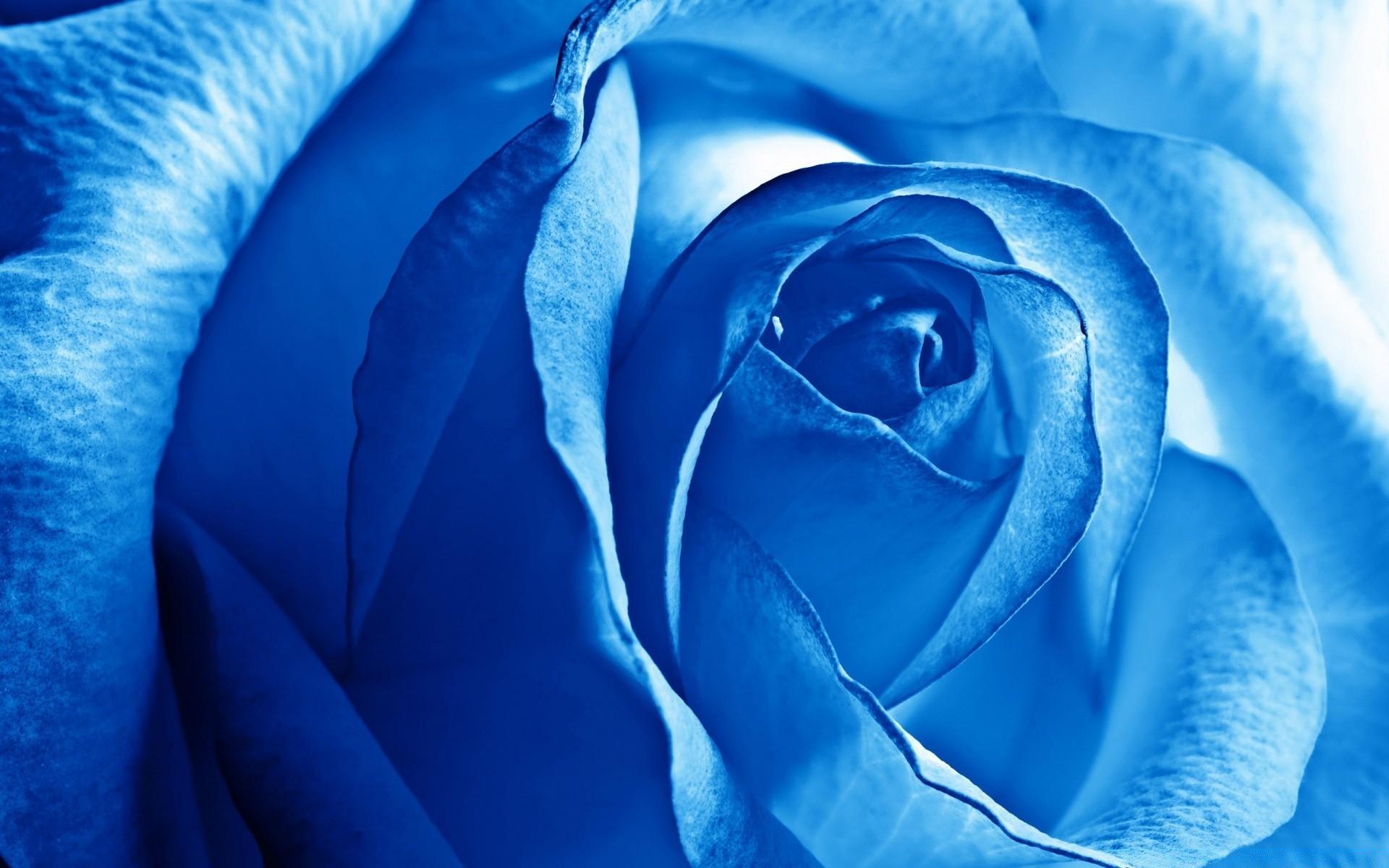 Обои на рабочий стол в голубом цвете