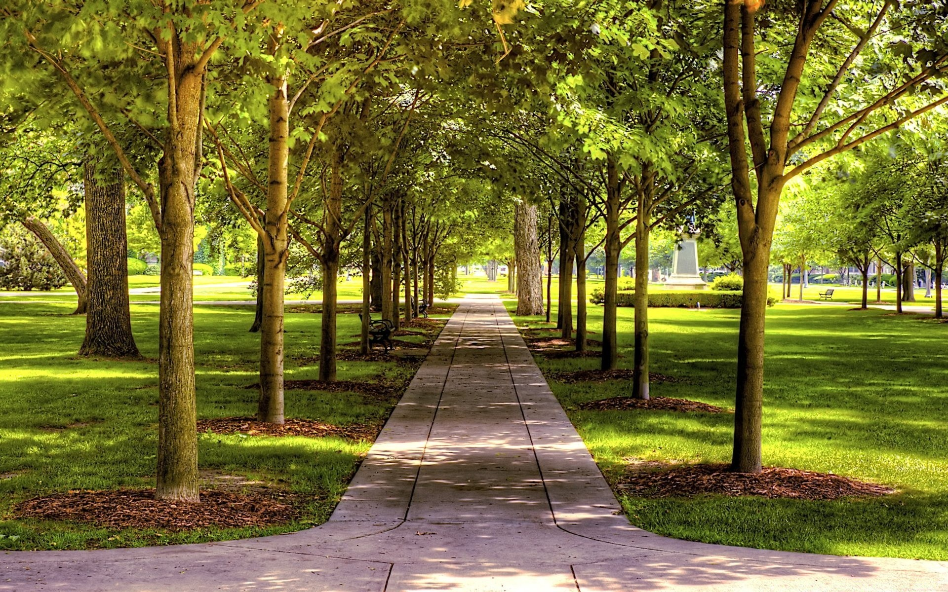 Simply fashions forest park Simply stated, Warren Forest Park is exceptional