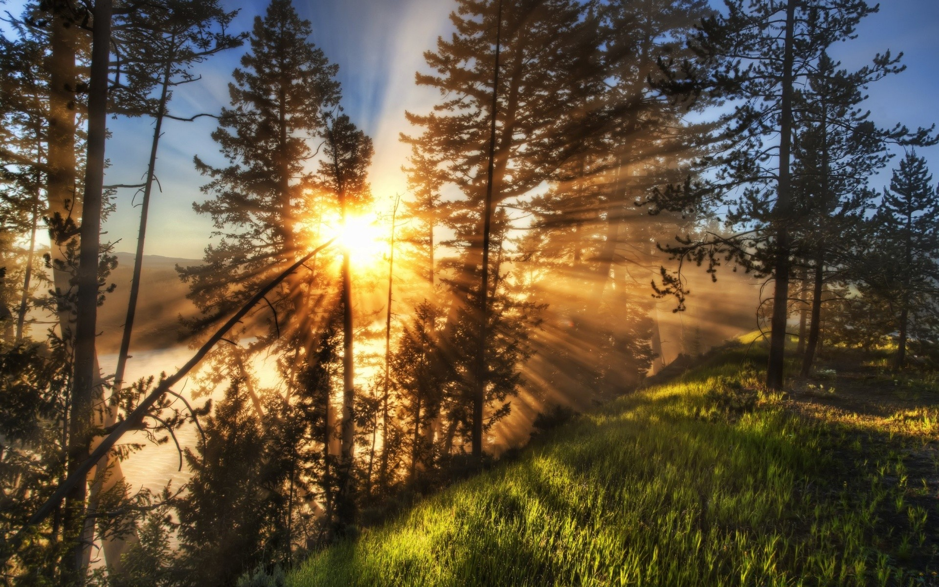 Утренняя фото красивая