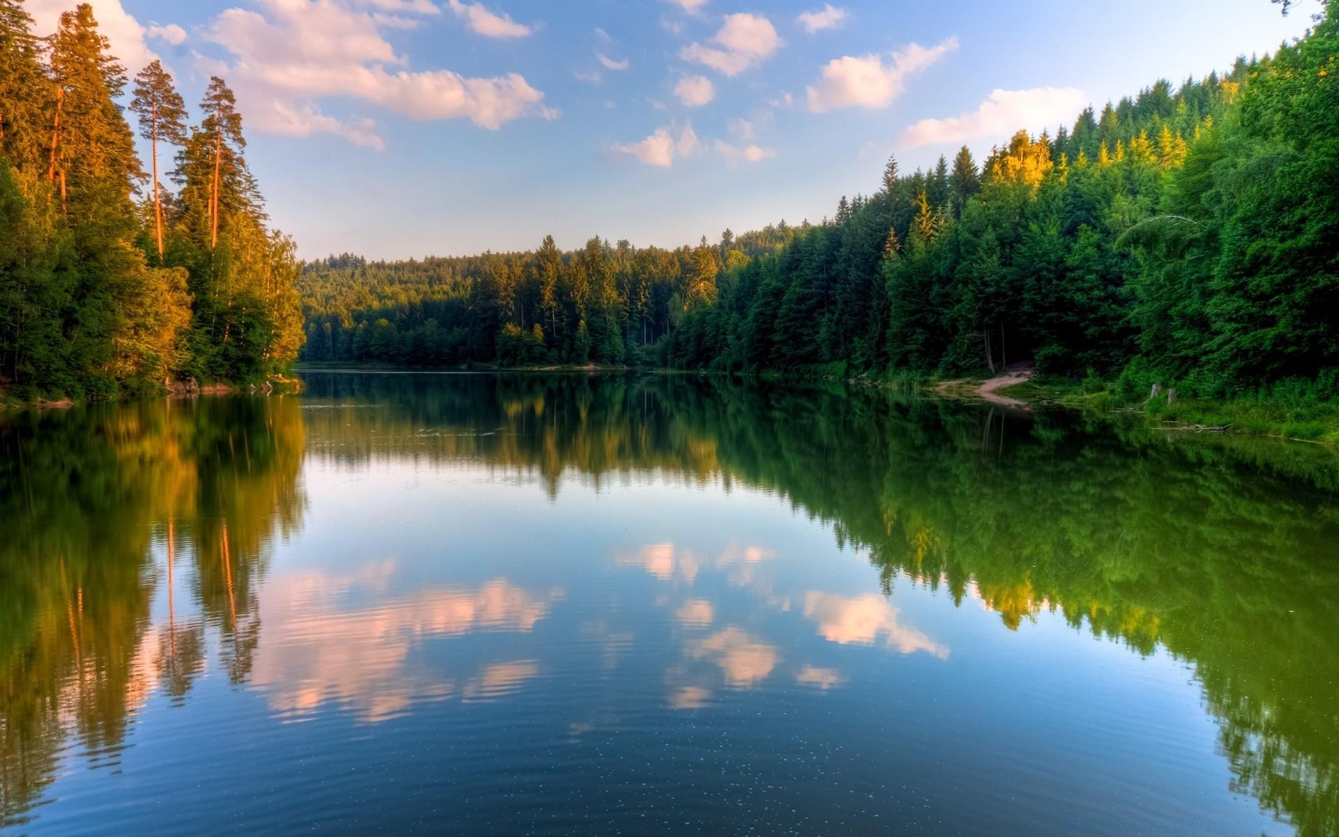 Река лес обои на телефон бесплатно