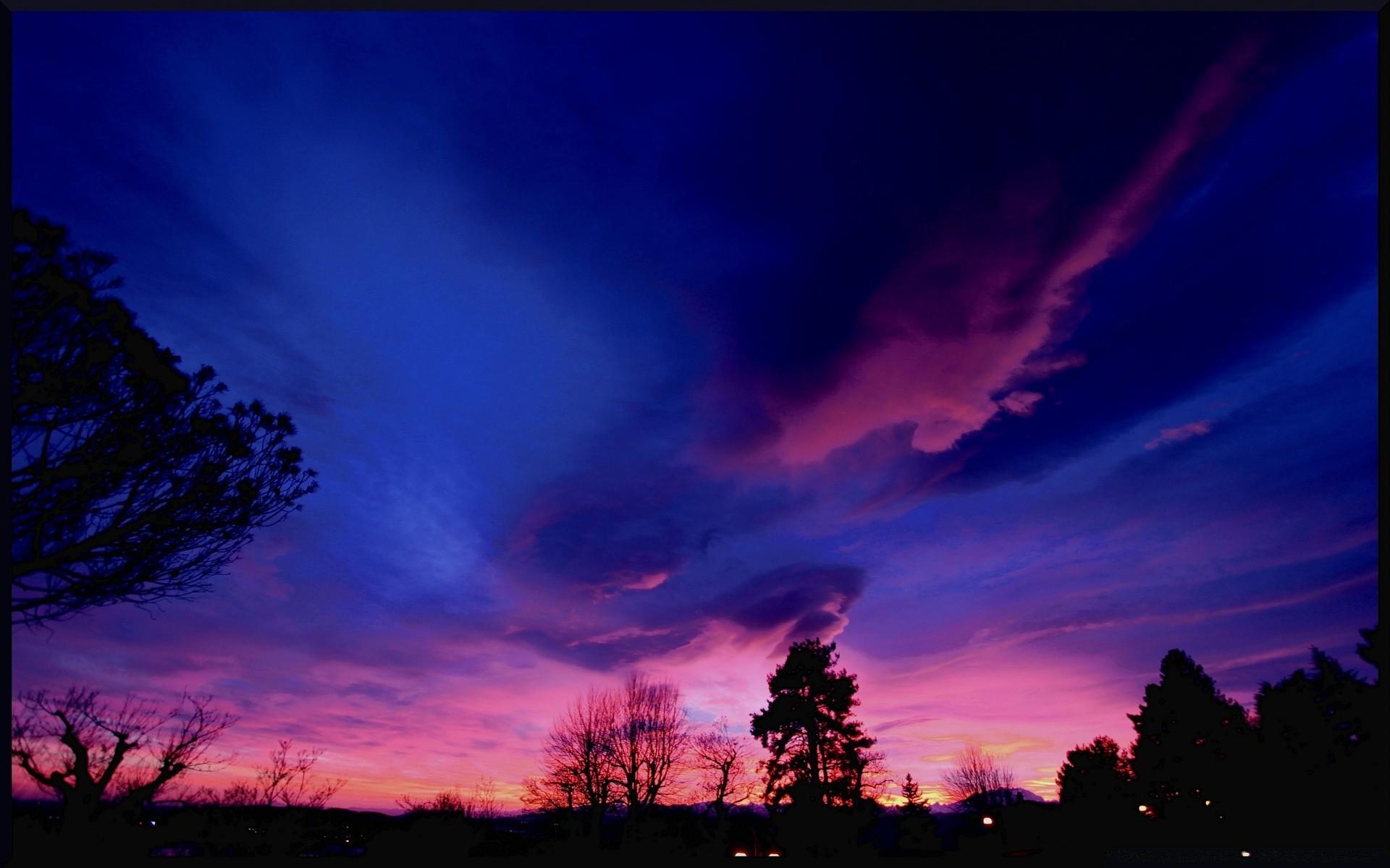 характерная картинки лиловое небо волчица
