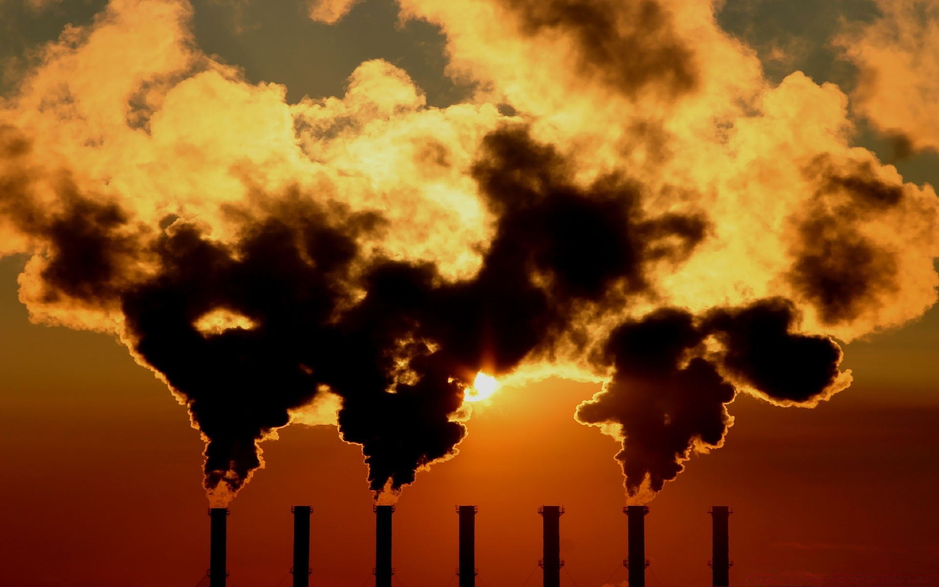 7 Serious Harmful effects of pollution pictures