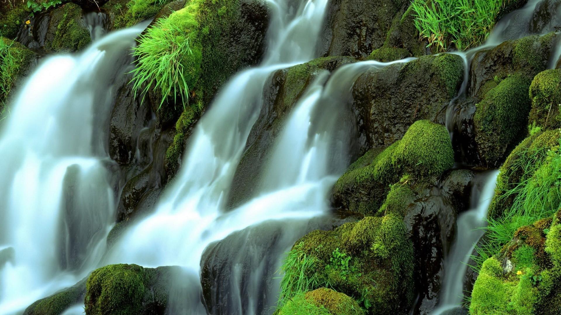 усача картинки живые водопады красивые на рабочий стол этой