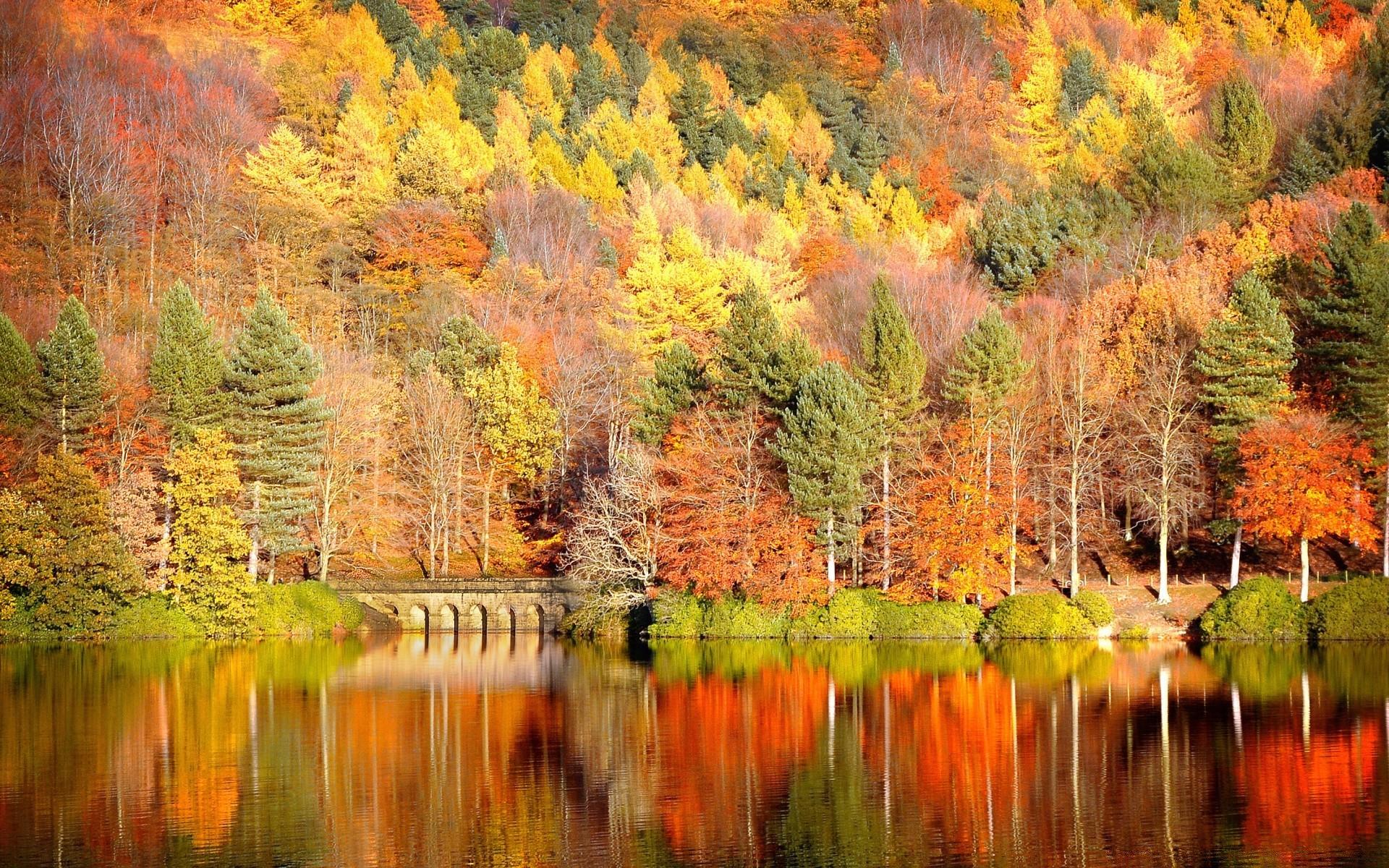 Красивые картинки для рабочего стола осень
