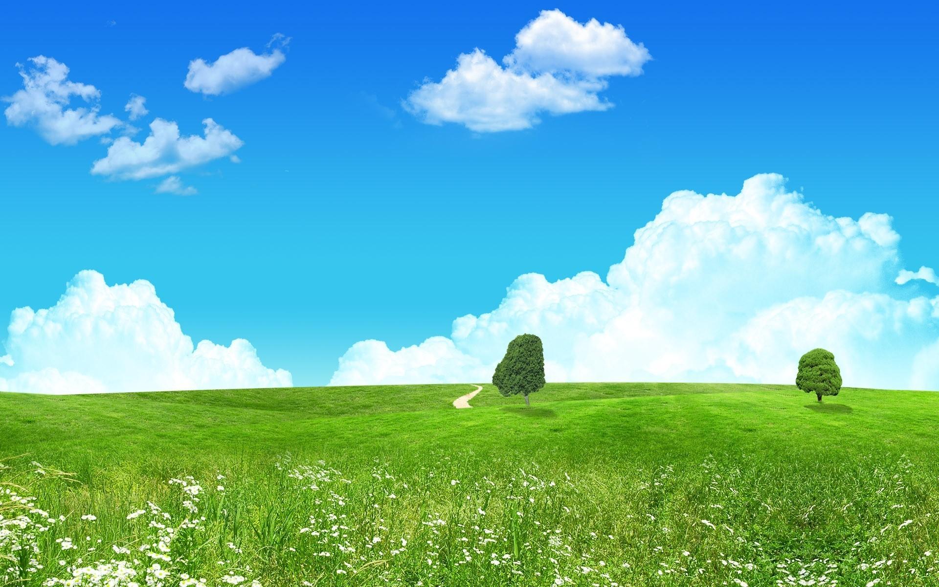 Земля в картинках лето