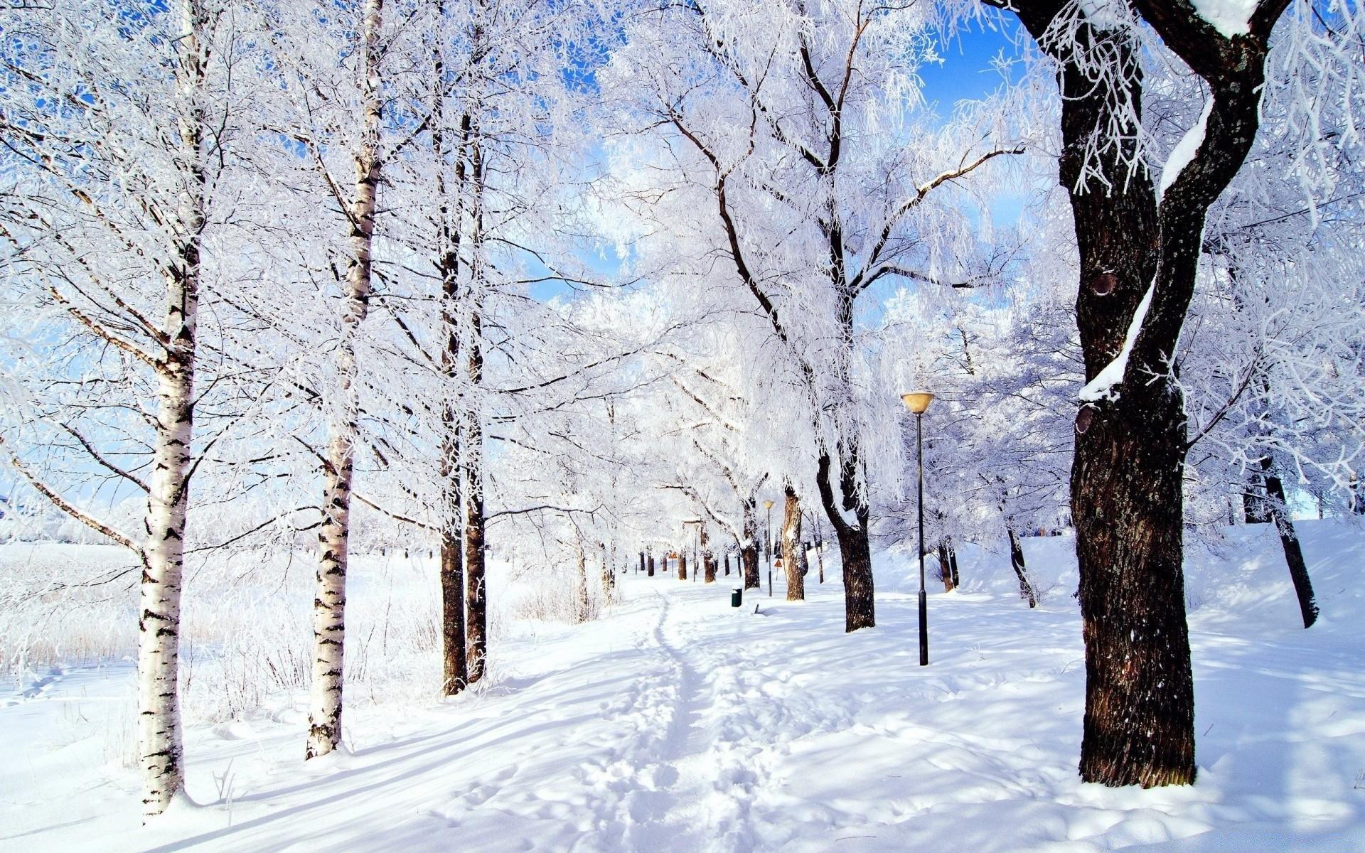 зимние картинки февраль на рабочий стол на весь экран