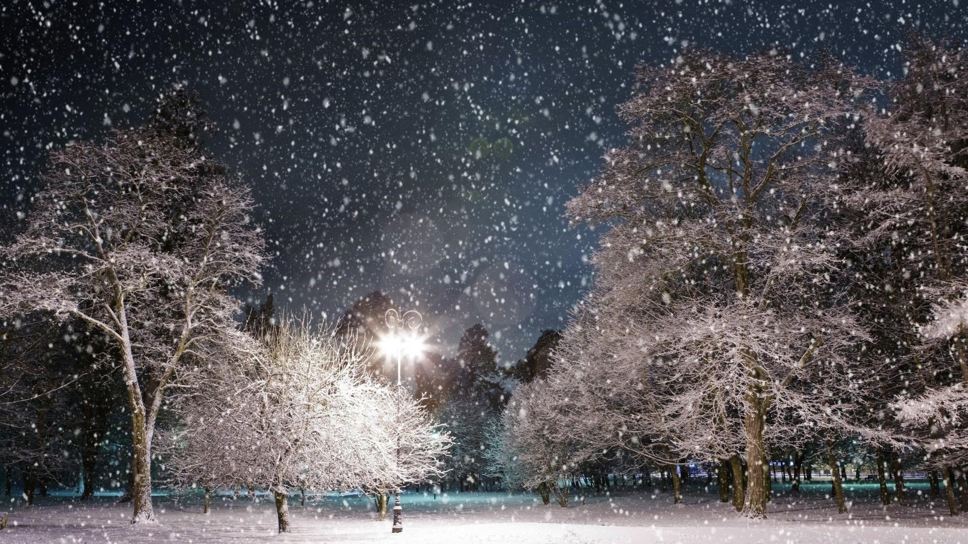 Фото на рабочий стол снегопад