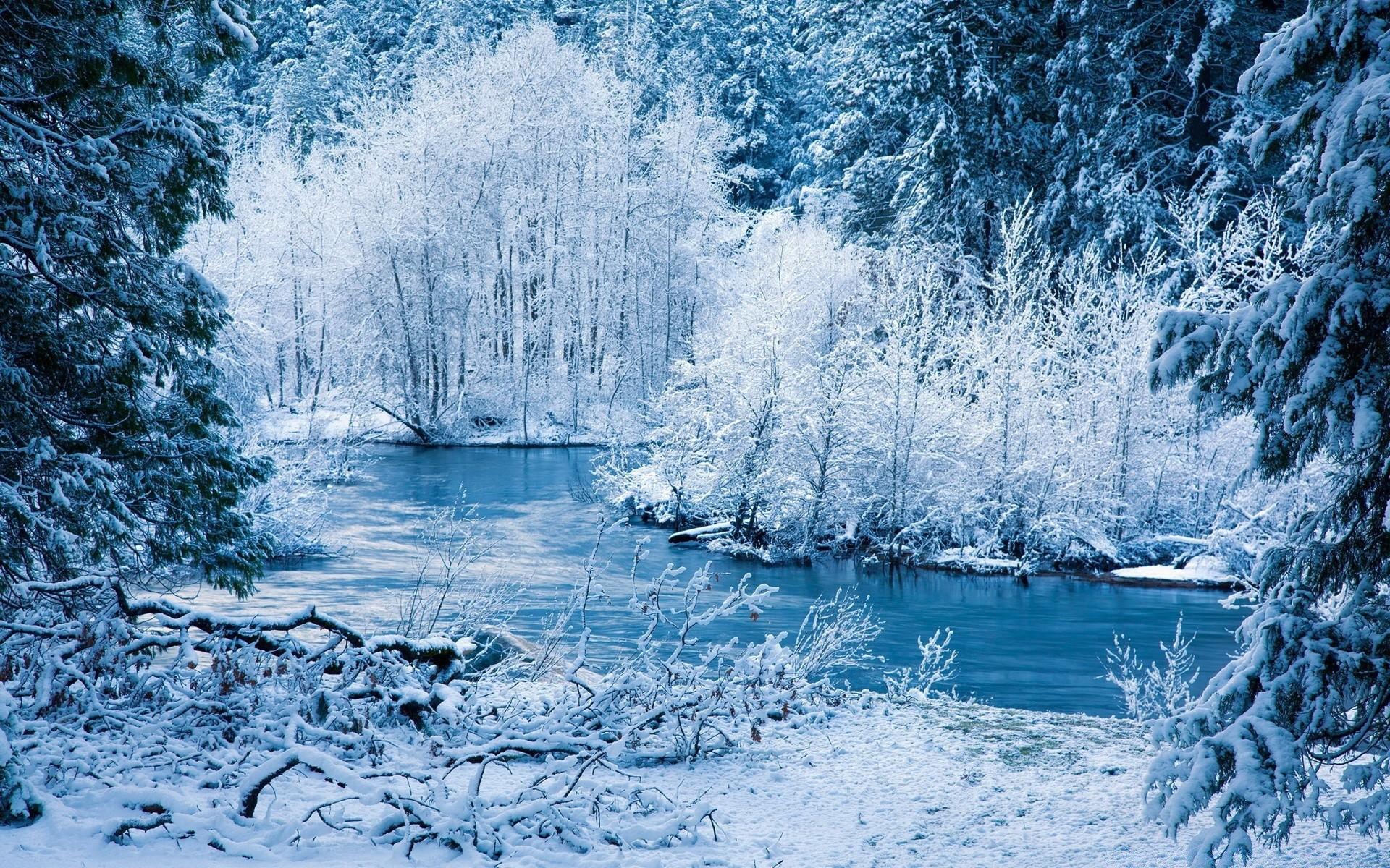Очень красивая зимняя картинка на рабочий стол вашему вниманию