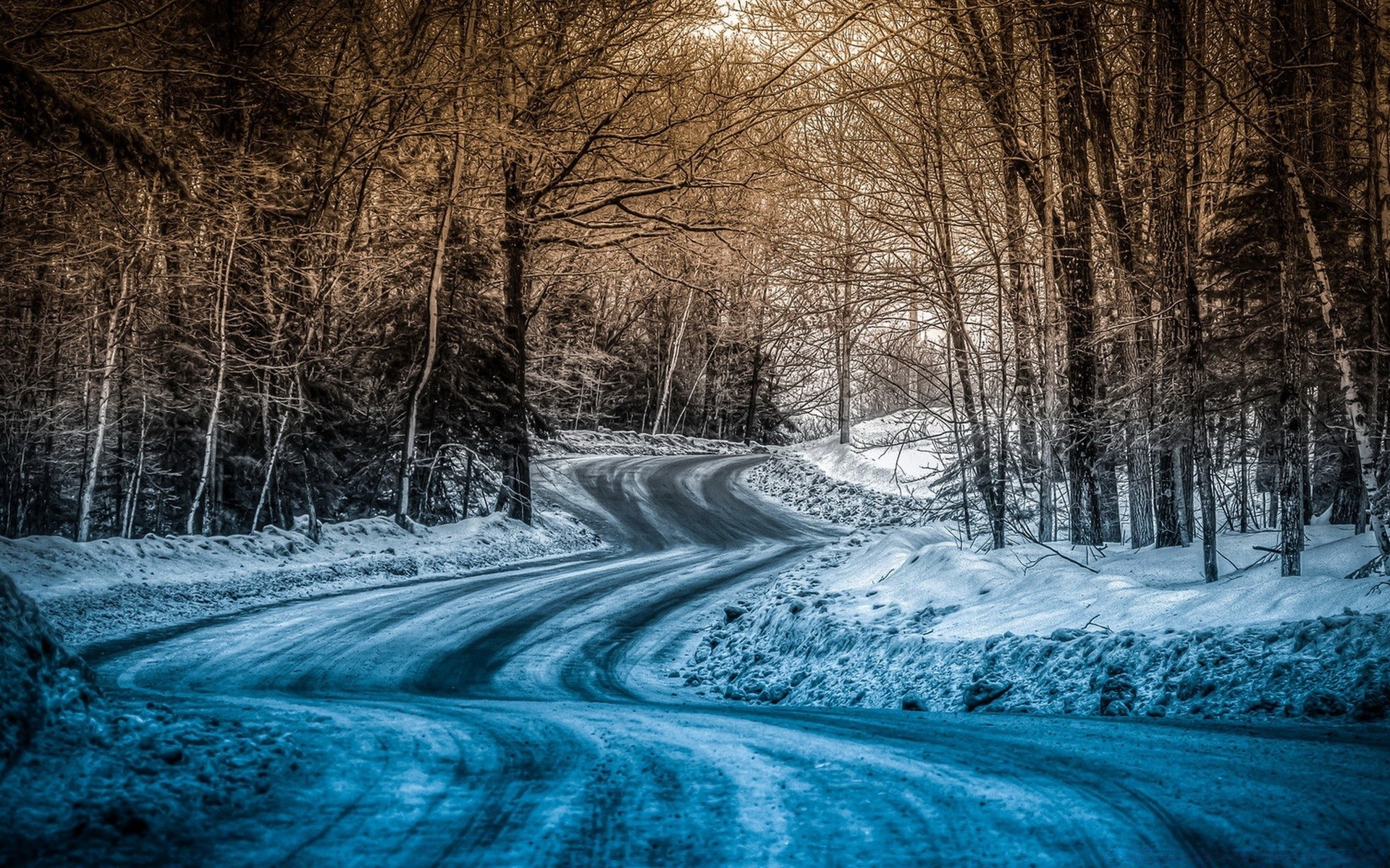 заснеженная дорога красивые фото садовод