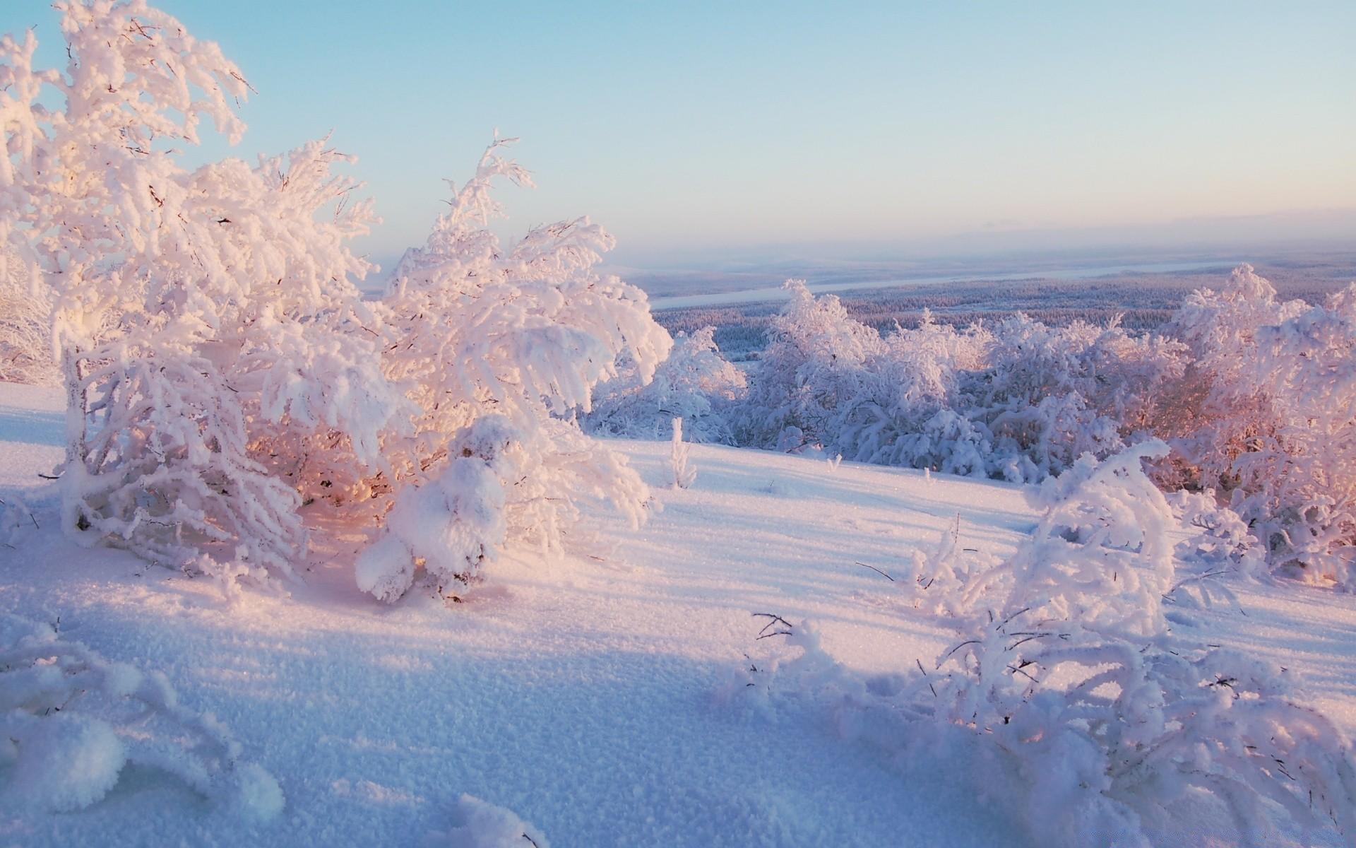 Картинки на экспресс панель зима
