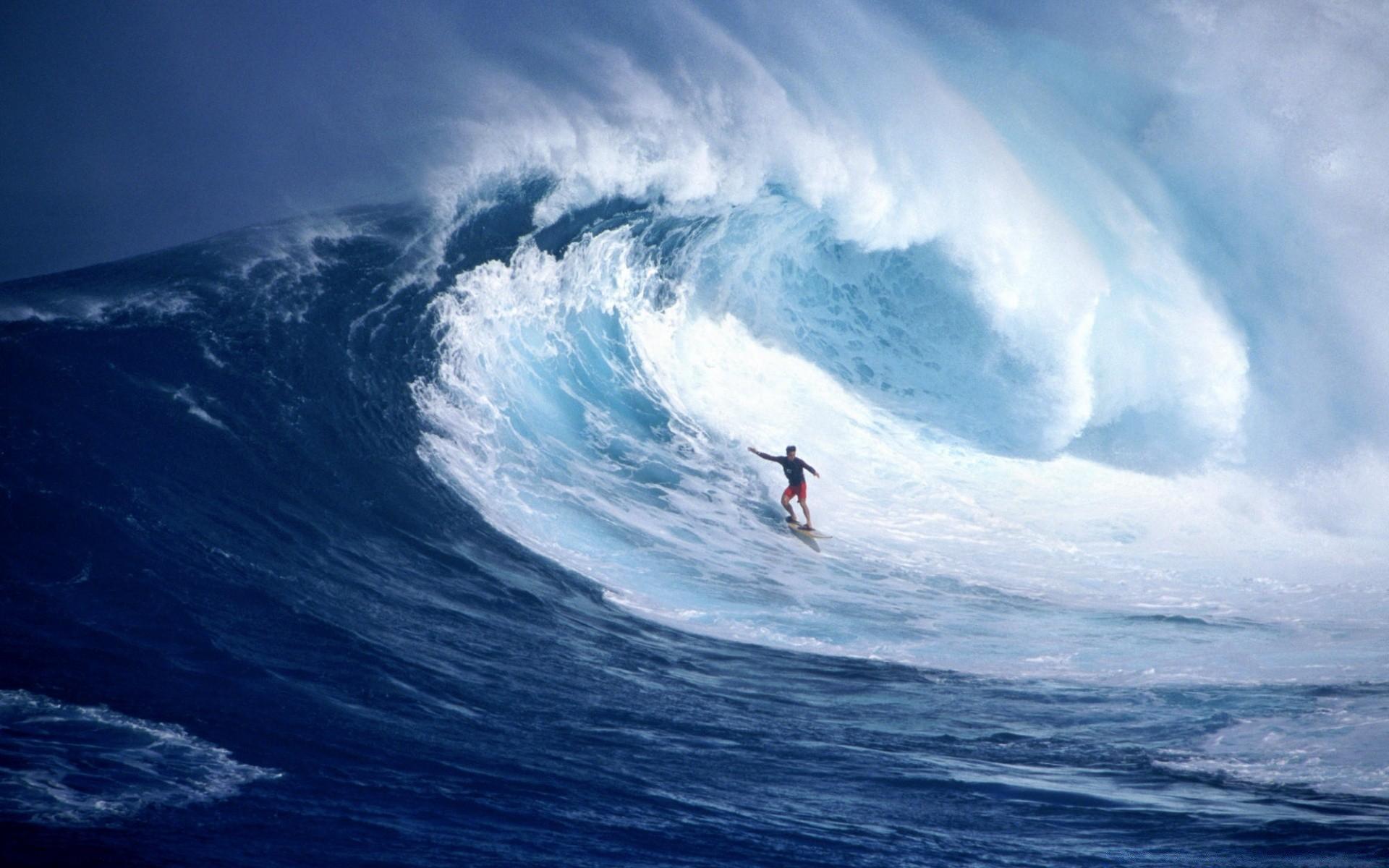 серфингист парус  № 3098937 бесплатно