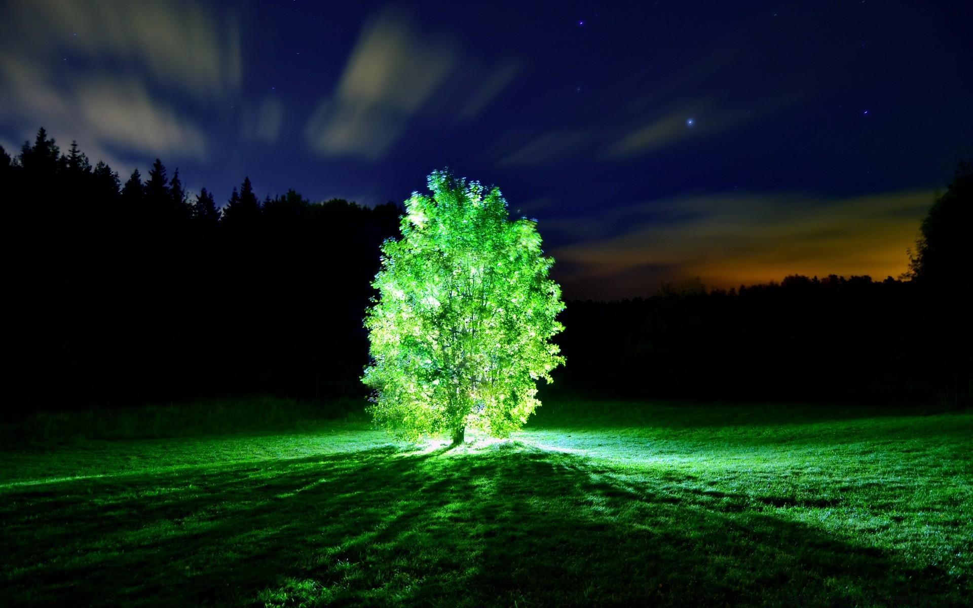 люминесценция фото высокого качества начала