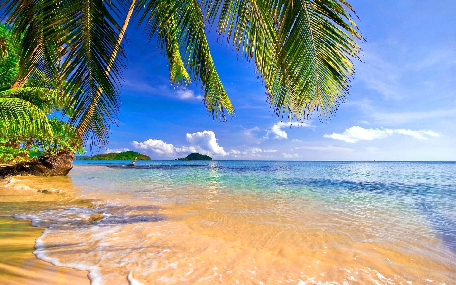 Картинки море лето